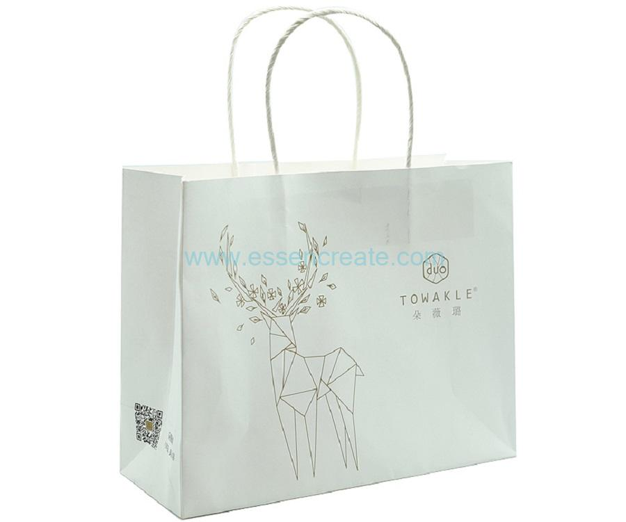 White Kraft Paper Gift Bags with Twisted Handle